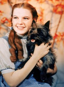 Judie Garland az Dorothy