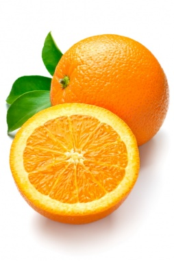 portokal_razriazan_1130