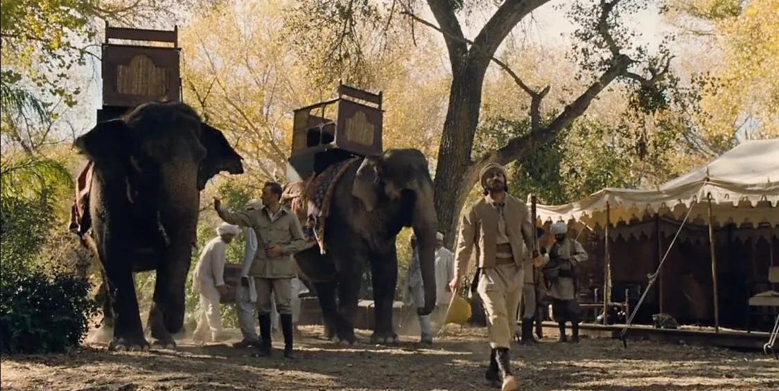 съд за насилие над слон